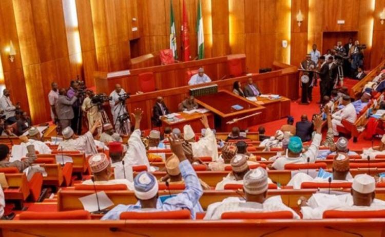 Nigeria newly elected senators