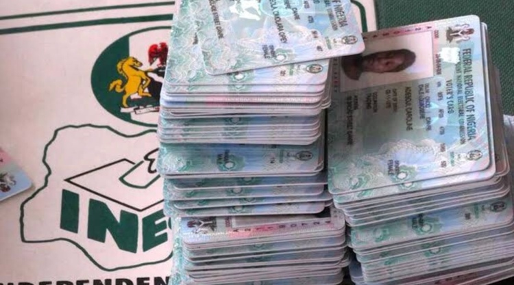 Nigeria Decides: INEC postpones assembly election in Adamawa